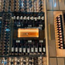 不锈钢恒温红酒柜家用 会所别墅酒窖柜 现代轻奢高端 酒柜 展