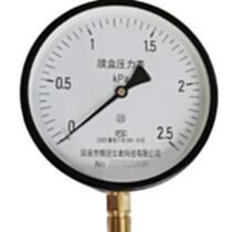 YE-150膜盒壓力表2.5級