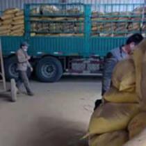 飼料棗粉廠家一手貨源紅棗粉適合養殖業灰分低價格低